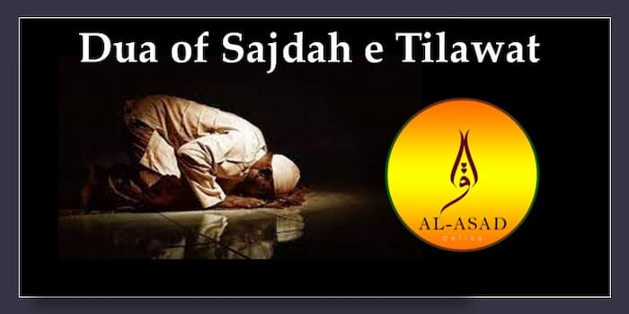 surah sajdah, sajdah, sajda, tilawat,tilawate, sajda in quran, sajdah in quran, sajdahs in quran, how many sajda in quran, how many sajdahs in quran, sajda, sujood in quran, sajda tilawat dua, how to perform sajdah tilawat, tilawat meaning, tilawat means, tilawatquran, tlawet quran, tilawate, tilawatequraan, prostration in islam,
