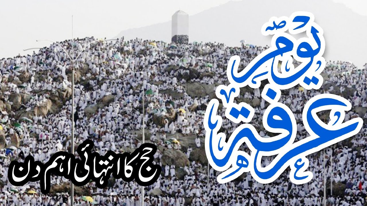 Write a detail note about The day of 'Arafah ? mentioning sentence in English, Sahih al bukhari in urdu, reward system for kids, and quranmualim Learn Quran, Quran translation, Quran mp3,quran explorer, Quran  download, Quran translation in Urdu English to Arabic,  almualim, quranmualim, Islam pictures, Islam symbol, Shia Islam, Sunni Islam, Islam facts],Islam beliefs and practices Islam religion history, Islam guide, prophet Muhammad quotes, prophet Muhammad biography, Prophet Muhammad family tree.