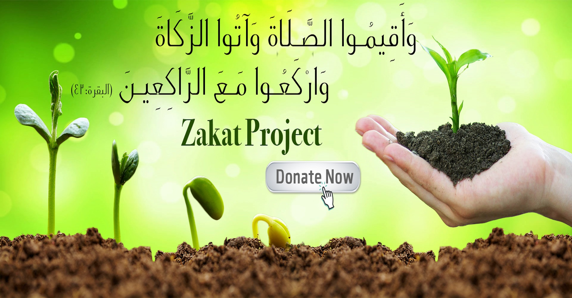 How many  the payment of Zakah  ? zakat calculator, zakat rules,who is eligible for zakat,sadaqah, definition of charitycharity water, and quranmualim. Learn Quran, Quran translation, Quran mp3,quran explorer, Quran  download, Quran translation in Urdu English to Arabic, Al Mualim, Quranmualim, Vislam pictures, Islam symbol, Shia Islam, Sunni Islam, Islam facts],Islam beliefs and practices Islam religion history, Islam guide, prophet Muhammad quotes, prophet Muhammad biography, Prophet Muhammad family tree.