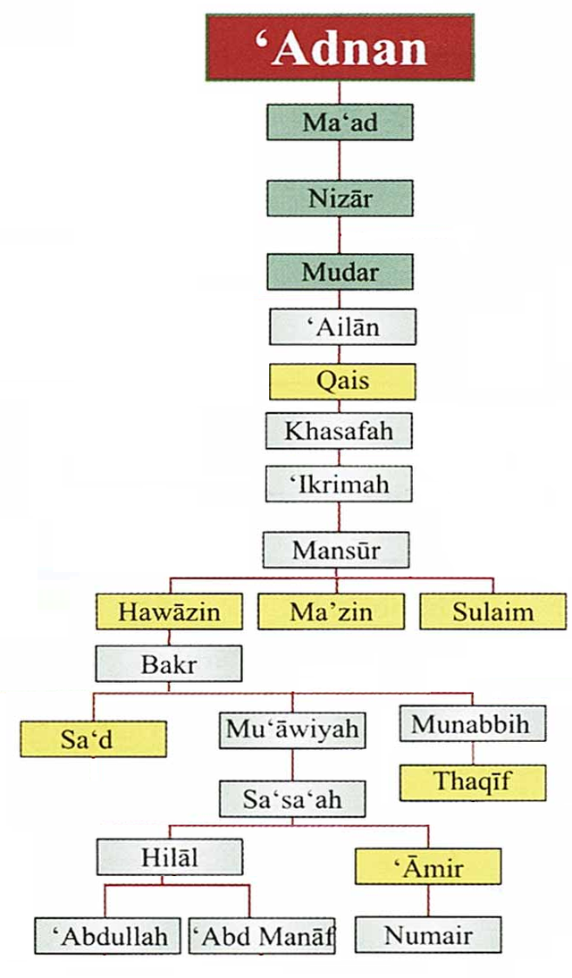 What commandants to Deputations did the prophet give ?What does jolt mean. Luggage sets, luggage target, travel bag luggage, comforts wiki and quranmualim. Learn Quran, Quran translation, Quran mp3,quran explorer, Quran download, Quran translation in Urdu English to Arabic, Al Mualim, Quranmualim, V Islam pictures, Islam symbol, Shia Islam, Sunni Islam, Islam facts, Islam beliefs and practices Islam religion history, Islam guide, prophet Muhammad quotes, prophet Muhammad biography, Prophet Muhammad family tree.