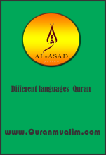 How many languages Quran is Translated? English to Hindi, English to bangle, Latin to English, Swedish to English, English to Dutch, Farsi to English