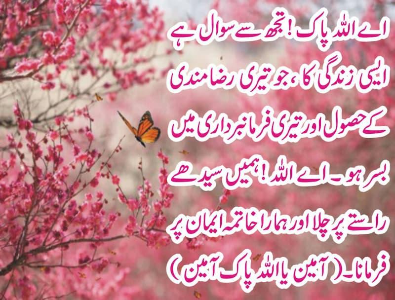 pdf book,quran about prayer, Quran prayer in English, , quran prayers in Arabic, muslim blessing, prayers in arabic, islamic blessings, arabic prayer, quran prayer, muslim chants, quran pray,