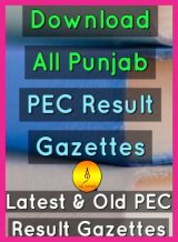 Gazettes Download PEC 8TH and 5th class, 8th class result 2019, 5th Class Gazette 2019, 5th Class Gazette Download,