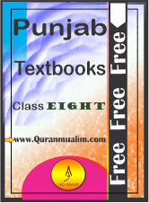 Class 8 Punjab Textbooks free PDF eBooks download, 8th class textbooks, elementary vocabulary, 8th english grammar, teachers guide math 8,, dictionary english to urdu