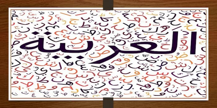 Arabic Worksheets for Grade 1 PDF Free Download, Arabic Alphabet worksheets for preschools pdf, Arabic letters for baggers