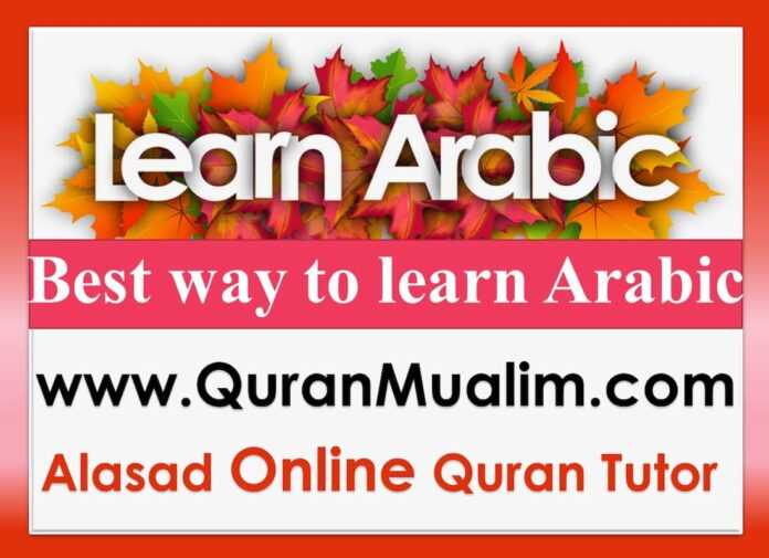 learn arabic, beginning arabic, learning arabic language, we long does it take to learn arabic, practice arabic, arabic lessons, learn how to speak arabic, learn to read arabic, teach me arabic, is arabic easy to learn, do you speak arabic, fusha arabic, do you speak arabic in arabic, speak arabic, learning in arabic, arabic reading, how i can, arabic reading practice, learn basic arabic, learn to write arabic, my in arabic, speak arabic in 30 days, how to speak arabic for free