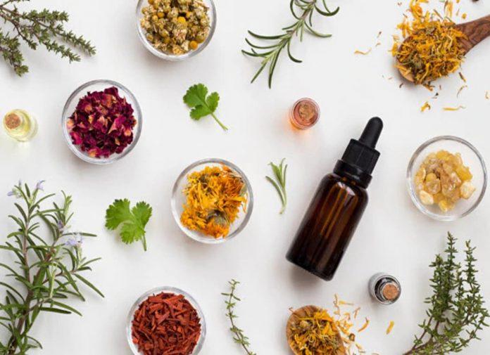 herbalism book, herb medicine book, herbology books, books on herbal healing, herbal books, learning herbalism, herb guide book, earn herbology, learn herbology, how to learn herbalism, self taught herbalist