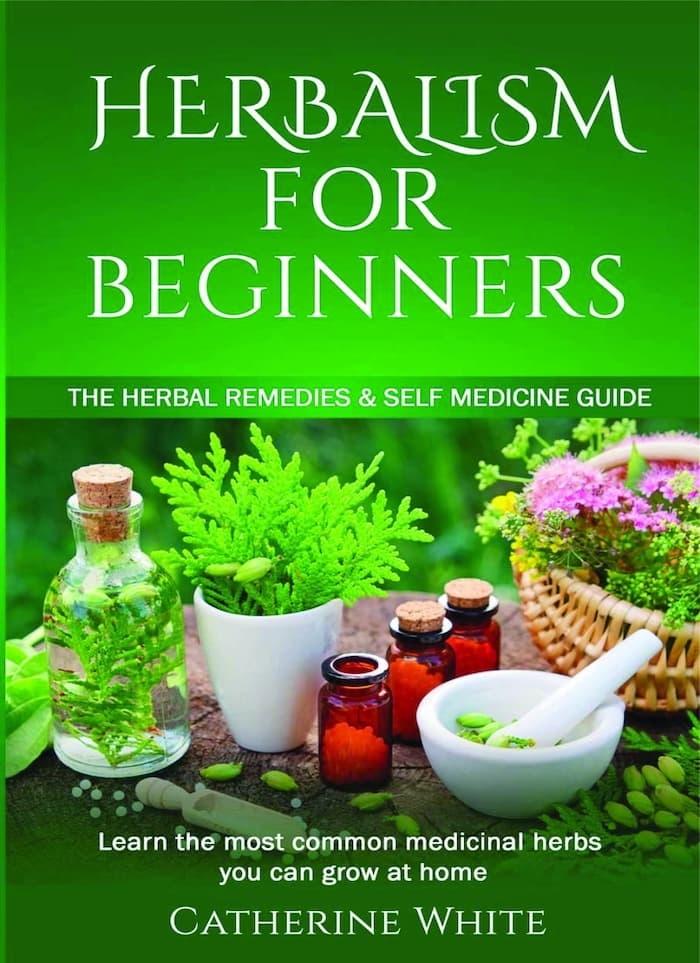 herbalism guide, herbalism, herbology for home study, learning herbs, online herbalist course free, herbal medicine for beginners, botanical healing, herbing guide, herbalism 101, herbs for beginners, herbalism books, books on herbs and their usesherbalism guide, herbalism, herbology for home study, learning herbs, online herbalist course free, herbal medicine for beginners, botanical healing, herbing guide, herbalism 101, herbs for beginners, herbalism books, books on herbs and their uses