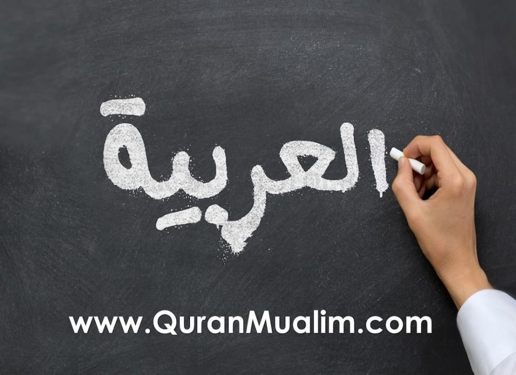 arabic curse words, arabic words in english, arabian words, cool arabic words, arabic sayings, list of arabic words, simple arabic words, arabic expressions, goodbye in arabic phonetic, basic arab phrases, shukran pronunciation
